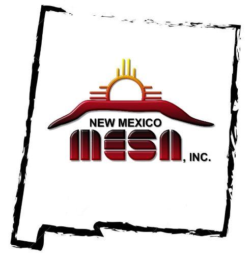 NM MESA Inc.
